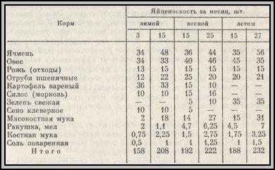 Рацион кур несушек в домашних условиях таблица 402
